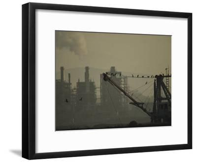 Birds Roost on the Riggings of a Crane Near Belching Smokestacks-Joel Sartore-Framed Photographic Print