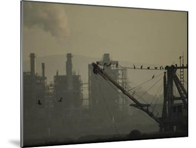 Birds Roost on the Riggings of a Crane Near Belching Smokestacks-Joel Sartore-Mounted Photographic Print