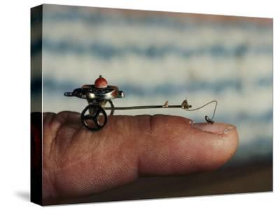 A Flea Pulls a Small Cart Along an Outstretched Finger-Nicole Duplaix-Stretched Canvas Print
