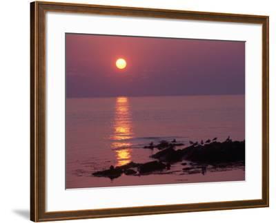Sunrise, Bornholm, Denmark-Tina Buckman-Framed Photographic Print
