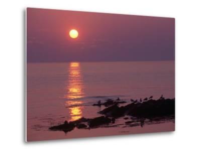 Sunrise, Bornholm, Denmark-Tina Buckman-Metal Print
