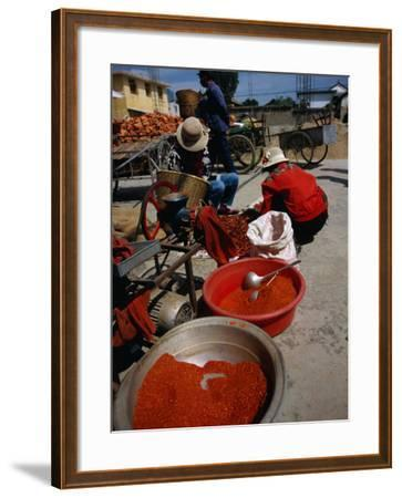 Women from Small Patou Island Grind Chilies to Powder, Dali, Yunnan, China-Diana Mayfield-Framed Photographic Print