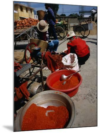 Women from Small Patou Island Grind Chilies to Powder, Dali, Yunnan, China-Diana Mayfield-Mounted Photographic Print