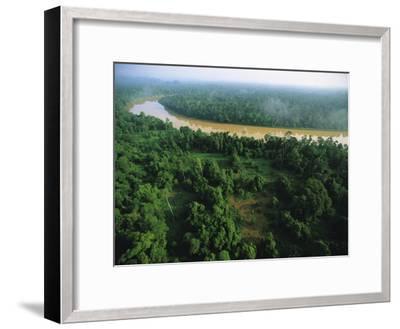 An Aerial View of Borneo Asian Elephant Habitat-Tim Laman-Framed Photographic Print