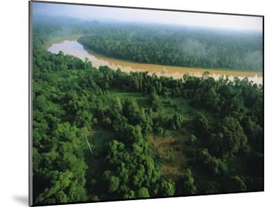 An Aerial View of Borneo Asian Elephant Habitat-Tim Laman-Mounted Photographic Print