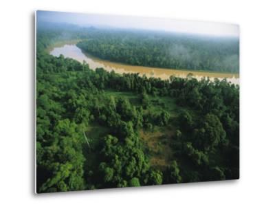 An Aerial View of Borneo Asian Elephant Habitat-Tim Laman-Metal Print
