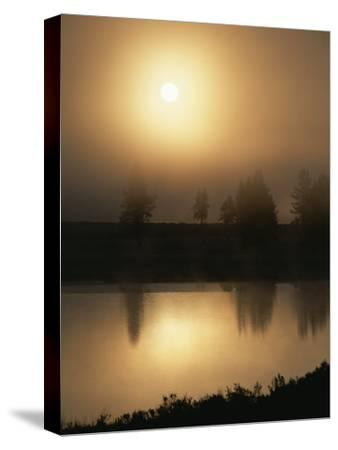 Silhouetted Trees Along the Yellowstone River at Sunrise-Tom Murphy-Stretched Canvas Print