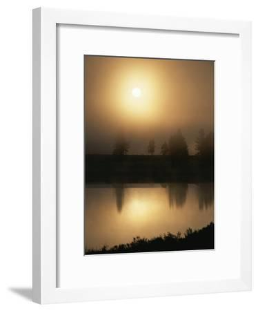 Silhouetted Trees Along the Yellowstone River at Sunrise-Tom Murphy-Framed Photographic Print