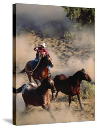 Cowboy Roping Horses-John Luke-Stretched Canvas Print