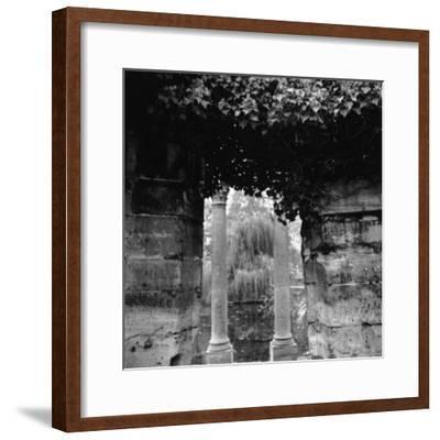 Columns and Pond with Tree, Paris, France-Ellen Kamp-Framed Photographic Print