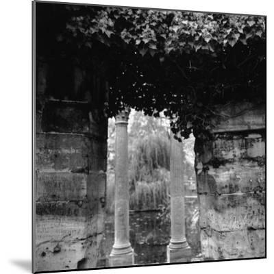 Columns and Pond with Tree, Paris, France-Ellen Kamp-Mounted Photographic Print