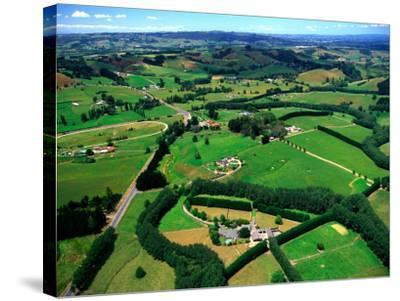 Farmland, Brookby, South Auckland, New Zealand-David Wall-Stretched Canvas Print