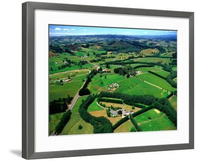 Farmland, Brookby, South Auckland, New Zealand-David Wall-Framed Photographic Print
