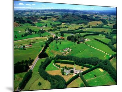 Farmland, Brookby, South Auckland, New Zealand-David Wall-Mounted Photographic Print