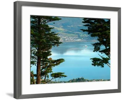 View From Larnach Castle, Oamaru, New Zealand-William Sutton-Framed Photographic Print