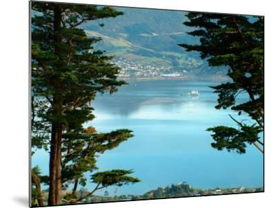 View From Larnach Castle, Oamaru, New Zealand-William Sutton-Mounted Photographic Print