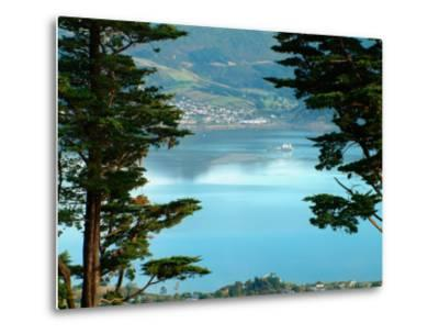 View From Larnach Castle, Oamaru, New Zealand-William Sutton-Metal Print