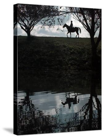 Horse Ride--Stretched Canvas Print