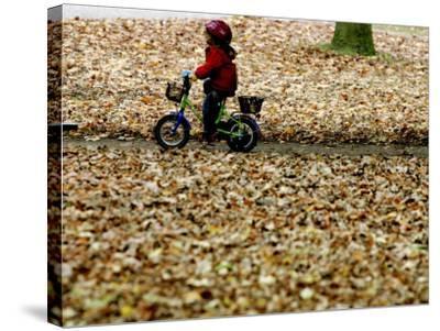 Ein Kind Radelt Am Dienstag, 8.November 2005, Zwischen Dem Herbstlaub--Stretched Canvas Print