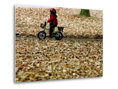 Ein Kind Radelt Am Dienstag, 8.November 2005, Zwischen Dem Herbstlaub--Metal Print