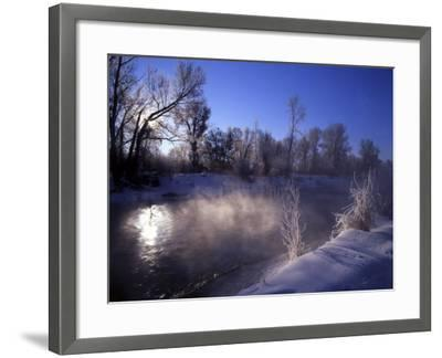 Rimed Trees and Morning Fog on Provo River, Wasatch Mountains, Utah, USA-Howie Garber-Framed Photographic Print