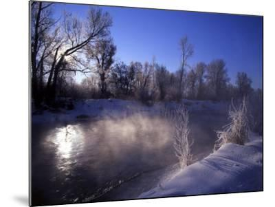 Rimed Trees and Morning Fog on Provo River, Wasatch Mountains, Utah, USA-Howie Garber-Mounted Photographic Print