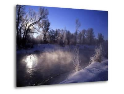 Rimed Trees and Morning Fog on Provo River, Wasatch Mountains, Utah, USA-Howie Garber-Metal Print
