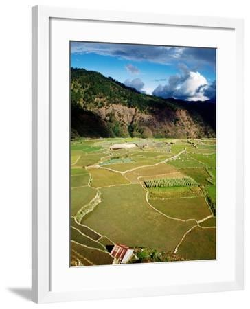 Rice Paddies, Aguid, Philippines-Pershouse Craig-Framed Photographic Print
