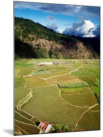 Rice Paddies, Aguid, Philippines-Pershouse Craig-Mounted Photographic Print