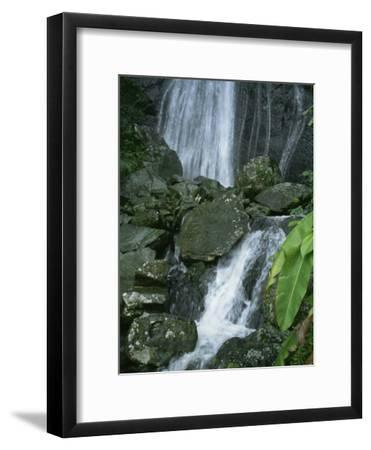 A Waterfall in El Yunque, Puerto Rico-Taylor S^ Kennedy-Framed Photographic Print