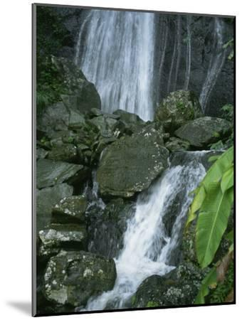 A Waterfall in El Yunque, Puerto Rico-Taylor S^ Kennedy-Mounted Photographic Print