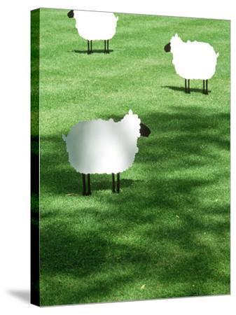 Sheep on Lawn as Decoration, Perfect Striped Lawn-Georgia Glynn-smith-Stretched Canvas Print