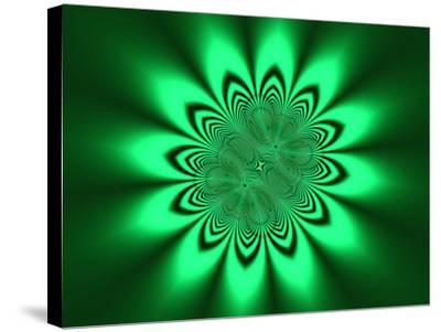 Abstract Pattern on Green Background-Albert Klein-Stretched Canvas Print
