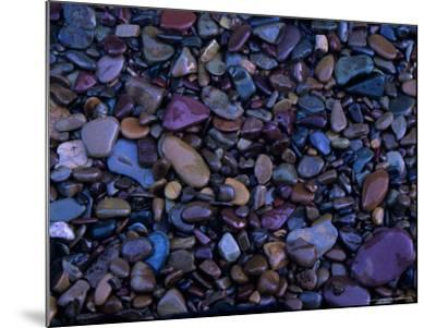 Gravel in Mountain Creek, Montana, USA-Jerry Ginsberg-Mounted Photographic Print