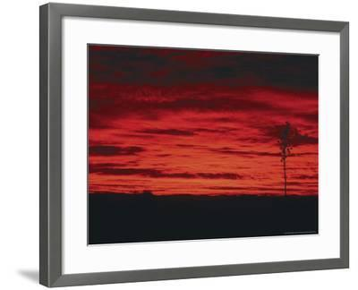 White Sands, New Mexico, USA-Dee Ann Pederson-Framed Photographic Print