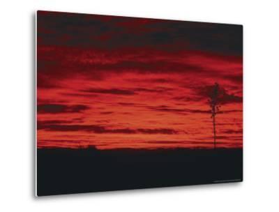 White Sands, New Mexico, USA-Dee Ann Pederson-Metal Print