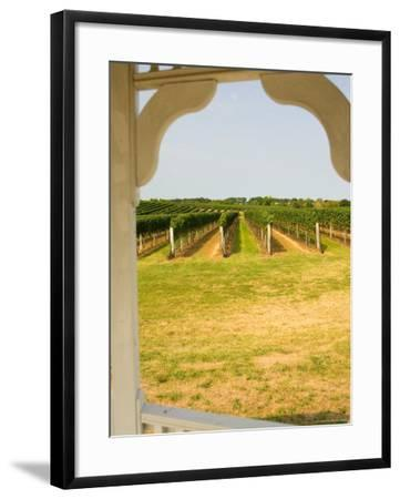 Farmlands and Flower Fields, The Hamptons, New York, USA--Framed Photographic Print