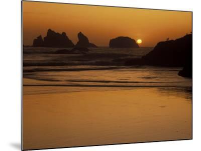 Bandon Beach with Mirrored Seastack Reflections, Oregon, USA-Adam Jones-Mounted Photographic Print