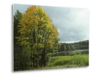 Cloud-Filled Sky over a Lake Surrounded by Trees-Klaus Nigge-Metal Print