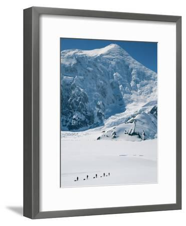 Climbers Hike Through a Snowy Landscape on Their Way to Denali-Bill Hatcher-Framed Photographic Print