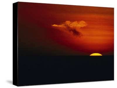 Red Sky at Sunset with the Sun on the Horizon and a Goose-Shaped Cloud-Tim Laman-Stretched Canvas Print