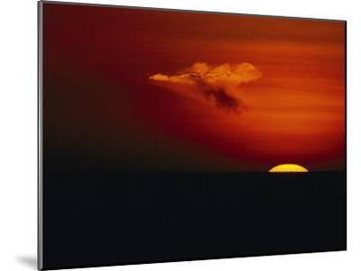 Red Sky at Sunset with the Sun on the Horizon and a Goose-Shaped Cloud-Tim Laman-Mounted Photographic Print