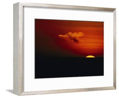 Red Sky at Sunset with the Sun on the Horizon and a Goose-Shaped Cloud-Tim Laman-Framed Photographic Print