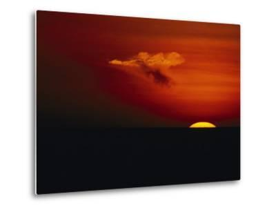 Red Sky at Sunset with the Sun on the Horizon and a Goose-Shaped Cloud-Tim Laman-Metal Print