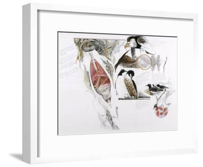 Diagram of the Effects of Oil and Oil Spills on Wildlife-Jack Unruh-Framed Photographic Print