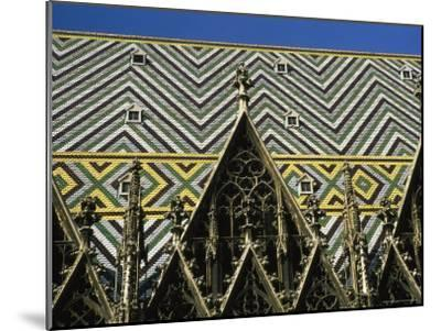 The Roof of St Stephen's Cathedral in Vienna, Austria-Taylor S^ Kennedy-Mounted Photographic Print