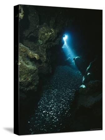 A Beam of Sunlight Illuminates an Underwater Cave-Raul Touzon-Stretched Canvas Print
