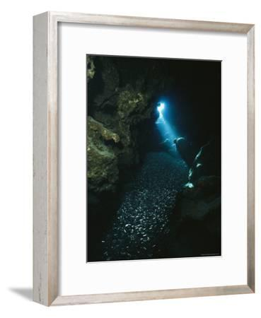 A Beam of Sunlight Illuminates an Underwater Cave-Raul Touzon-Framed Photographic Print