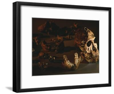A Two-Million-Year-Old Fossil of Australopithecus Robustus-Kenneth Garrett-Framed Photographic Print