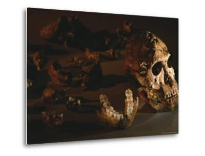 A Two-Million-Year-Old Fossil of Australopithecus Robustus-Kenneth Garrett-Metal Print